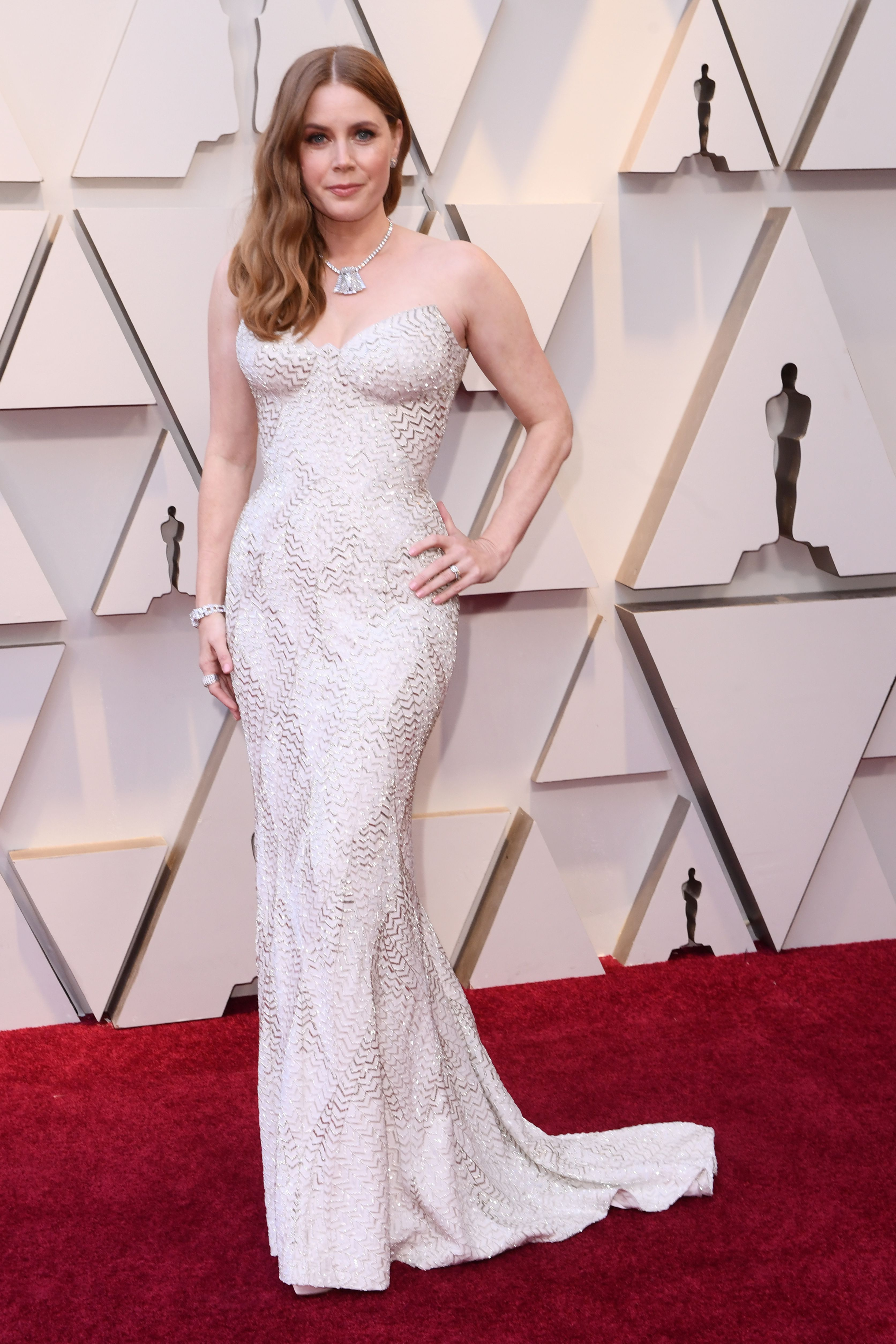 Mandatory Credit: Photo by David Fisher/REX/Shutterstock (10112734fn) Amy Adams 91st Annual Academy Awards, Arrivals, Los Angeles, USA - 24 Feb 2019