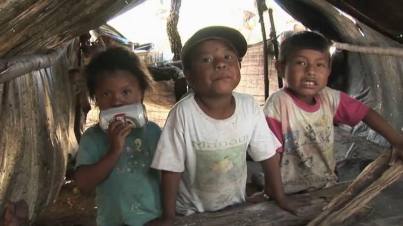 Etanol: combustível limpo ou extermínio dos povos indígenas