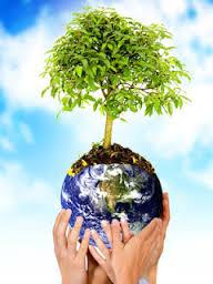 Mapa inédito coloca o Brasil em 3º lugar em conflitos ambientais