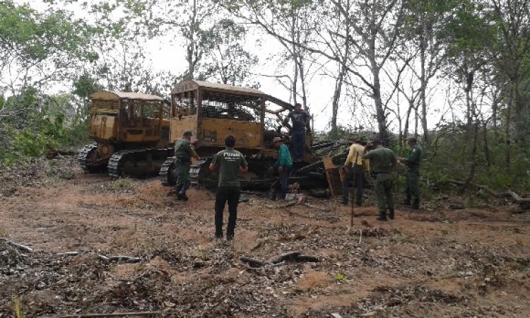Apinajés bloqueiam rodovia no TO pelo fim do desmatamento em área reivindicada como indígena