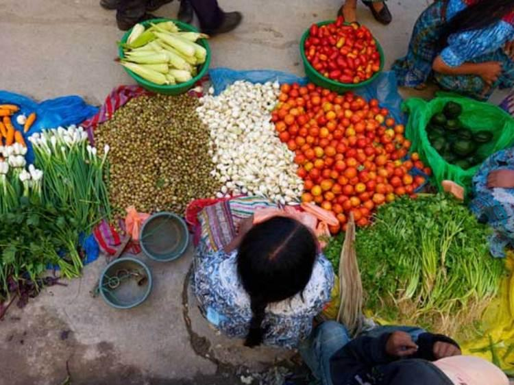 Brasil, Bolívia, Chile e Nicarágua são exemplos no combate à fome na América Latina