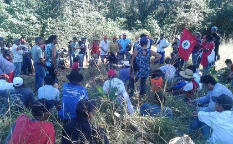 Cerca de 300 famílias ocupam latifúndio no Mato Grosso