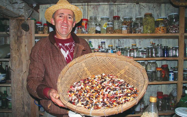 Produção orgânica se viabiliza como garantia de soberania alimentar