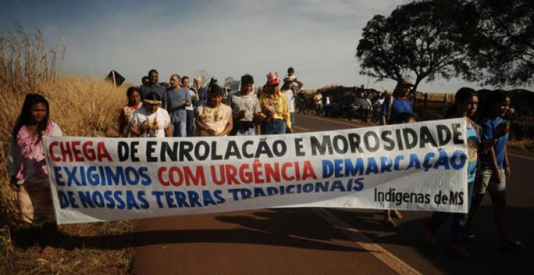 A dolorosa resistência dos Guarani Kaiowá