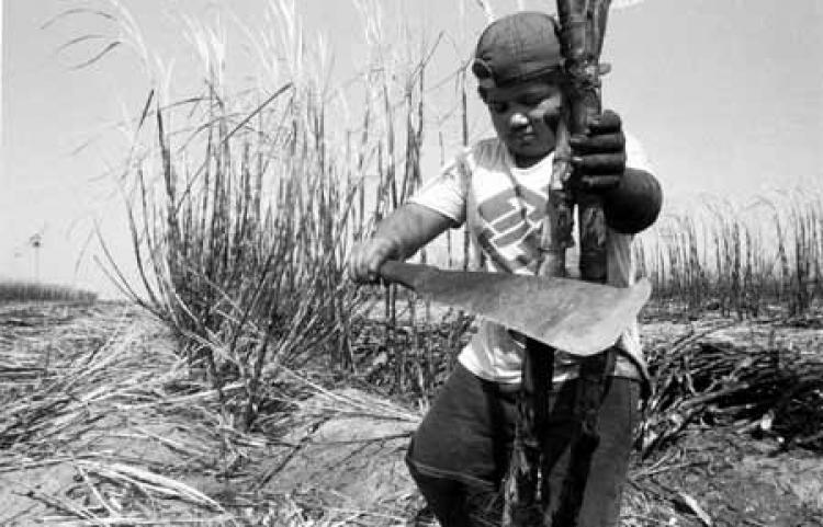 Trabalho escravo: Congresso prepara mais um golpe contra trabalhadores