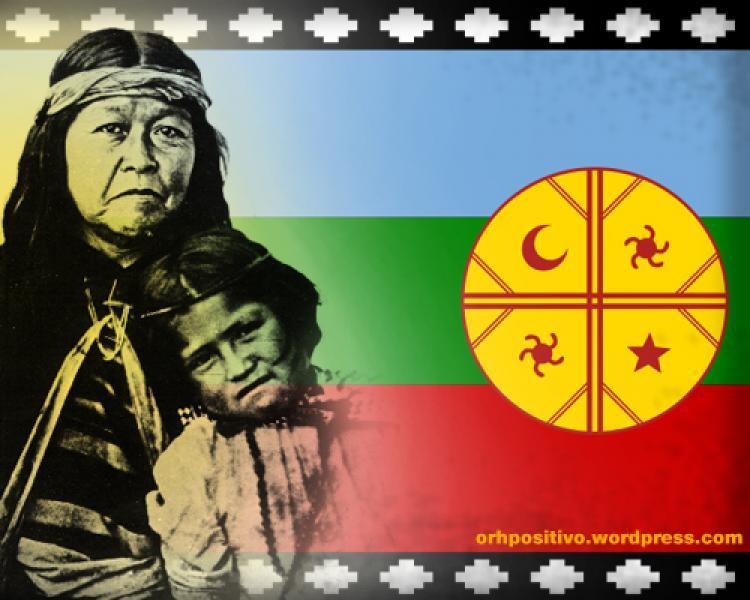 CHILE - Mapuches: 'nossa luta é contra o extrativismo florestal e jamais contra os trabalhadores'