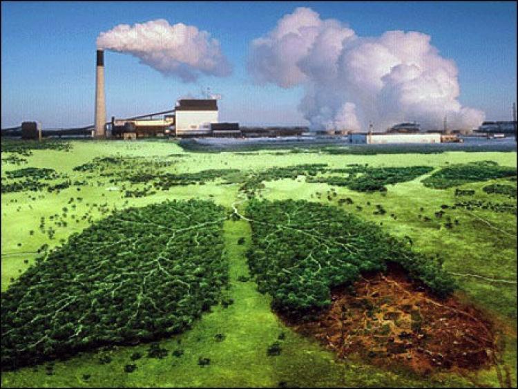 Saneamento básico: Se a terra é nossa casa comum