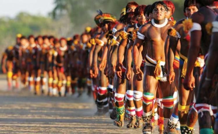 Povos Indígenas no Brasil: 516 anos sofrendo golpes