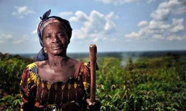 A revolta das mulheres do campo