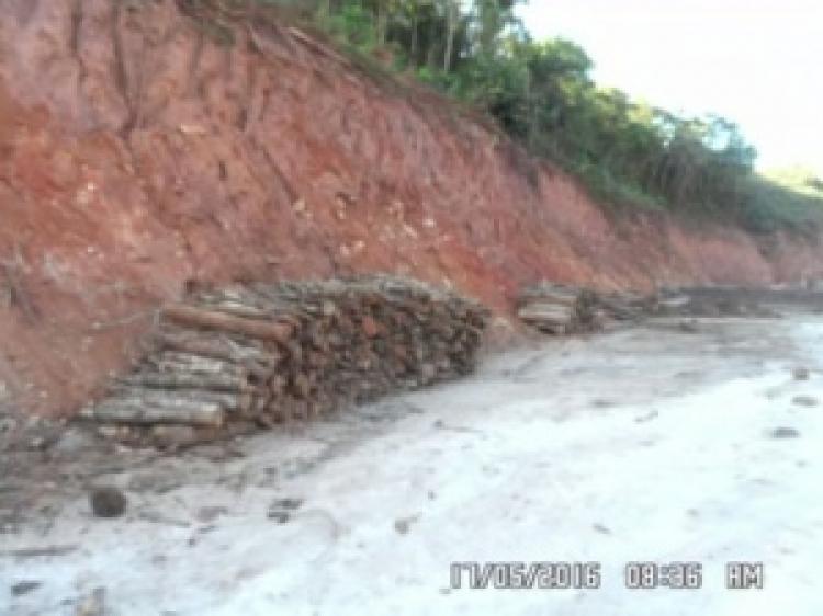 Samarco é flagrada desmatando área de mata atlântica em MG