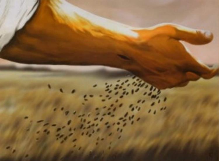 """""""Quem põe a mão no arado e olha para trás não serve para o Reino de Deus"""" (Lc 9"""