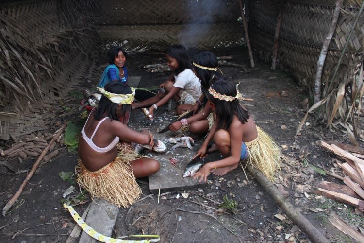 Organizações divulgam manifesto em defesa dos direitos dos povos indígenas do Amazonas