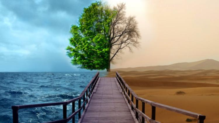 Analfabetismo ambiental e a preocupação com o futuro do planeta