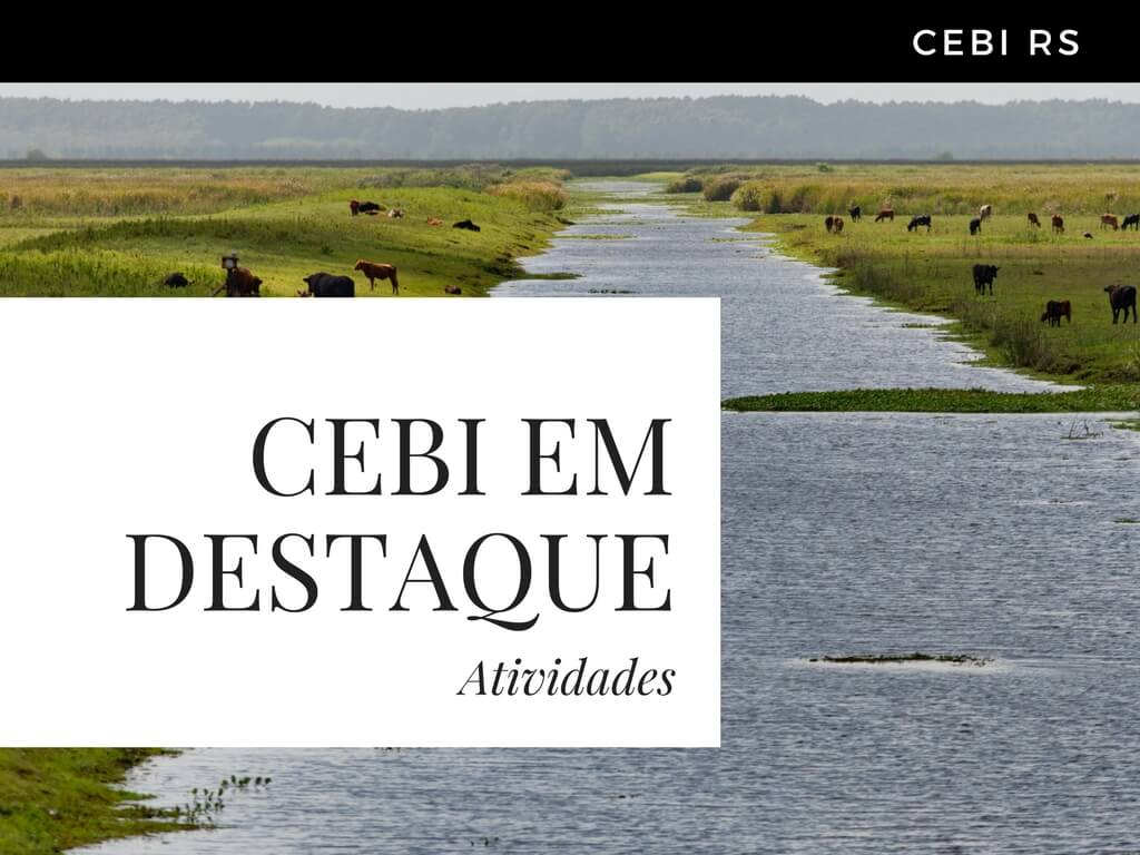 CEBI-RS: Eleição da nova coordenação e os debates sobre a Casa Comum