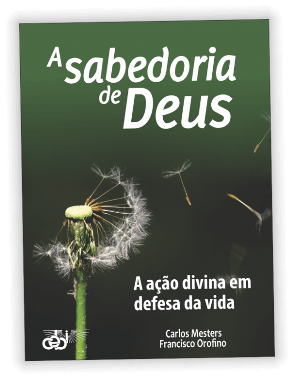 PNV358 A Sabedoria de Deus CEBI