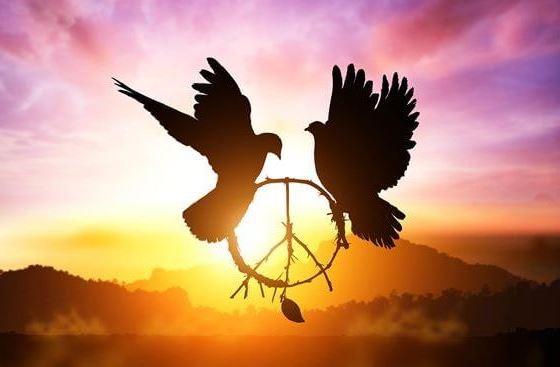 Democracia, Liberdade e Justiça
