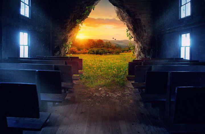 Reflexão do Evangelho: A Purificação do Templo
