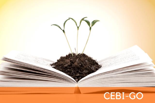 CEBI-GO: Seminário aborda conjuntura sociopolítica