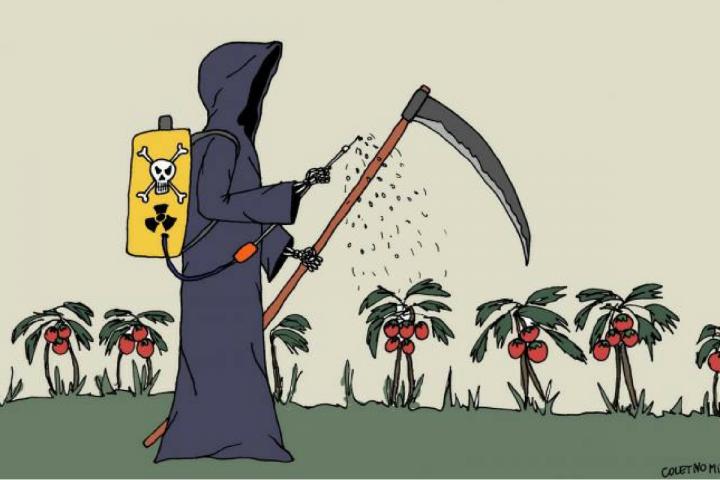 30% dos agrotóxicos liberados no Brasil foram banidos da Europa
