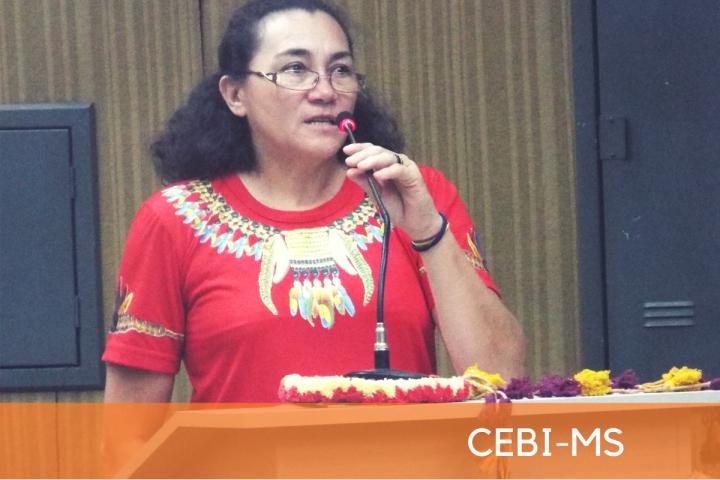 CEBI-MS: Seminário aborda a superação da violência contra os povos indígenas