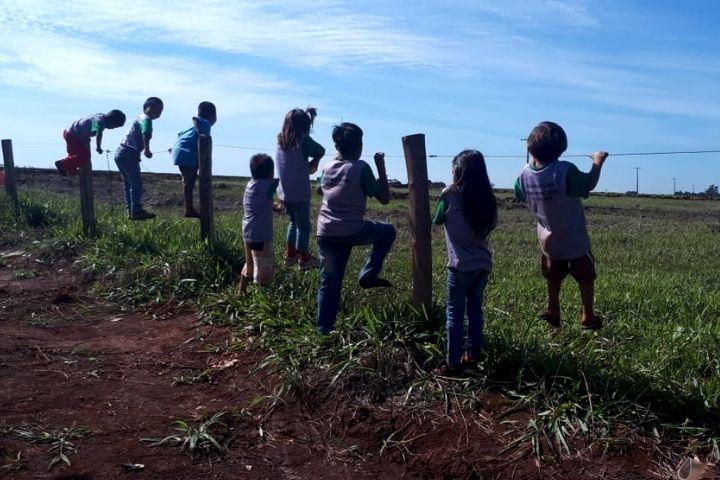 Agrotóxicos despejados perto de aldeia levam crianças e jovens Guarani Kaiowá ao hospital