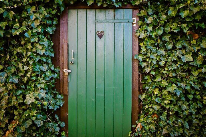 Comentário da semana: Lutai para entrar pela porta estreita