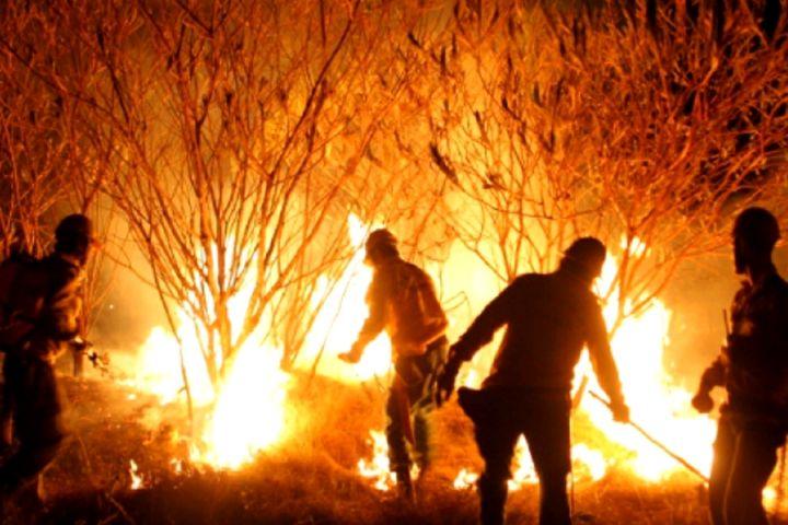 Incêndios se alastram pelas matas do Norte e Centro-Oeste e já podem ser sentidos até no céu de São Paulo