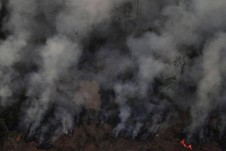 Desinformação alimenta o incêndio que Bolsonaro iniciou