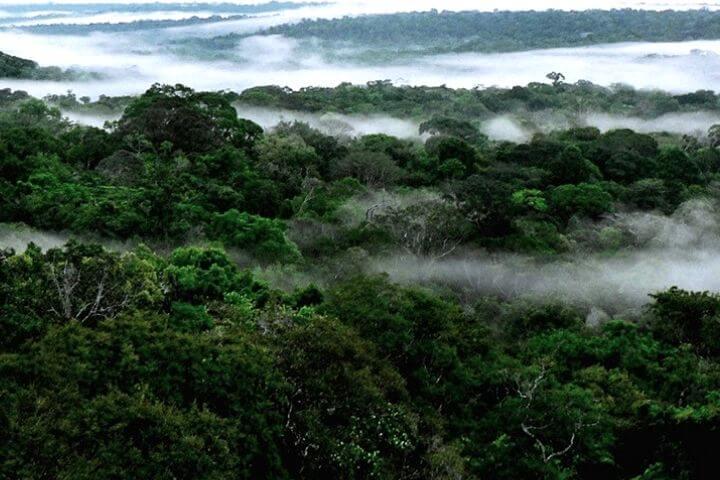 O Rio Voador de Fumaça e o Sínodo para a Amazônia