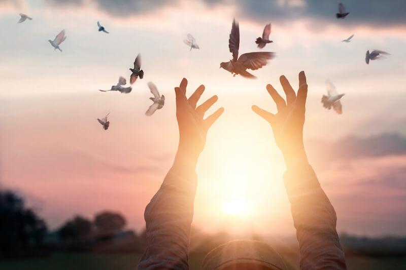 Reflexão do Evangelho: O Espírito da Verdade defende a comunidade