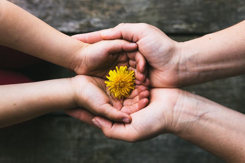 Reflexão do Evangelho: A compaixão como fonte do chamado