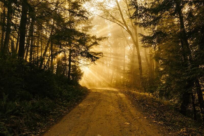 Reflexão do Evangelho: As bem-aventuranças como caminho de santidade