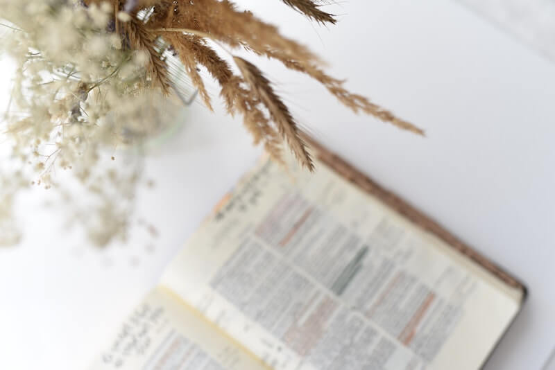 Reflexão do Evangelho: A parábola dos talentos