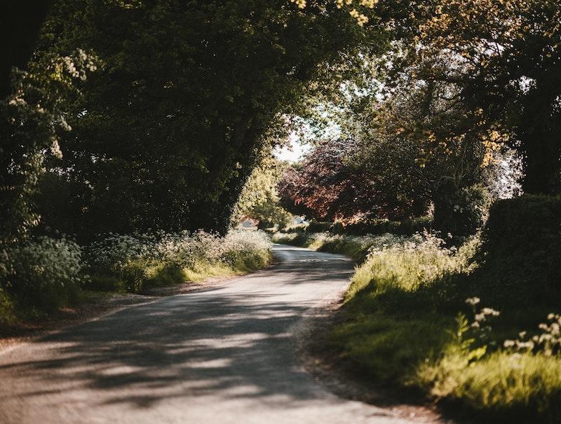 Reflexão do Evangelho: Endireitai o caminho do senhor!