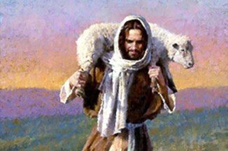 O bom pastor se despoja da própria vida por suas ovelhas