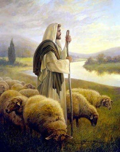 A compaixão é a base, o dinamismo e o horizonte da vida cristã!