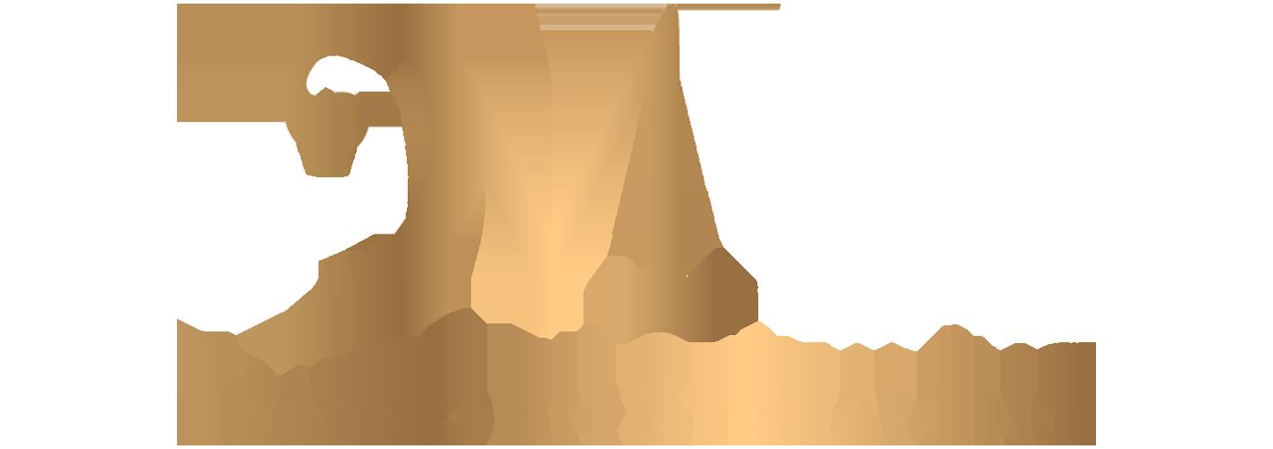 AMMA ÓPERA Y MUSICALES