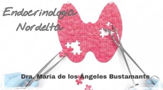 María de los Ángeles Bustamante - Galería de imágenes