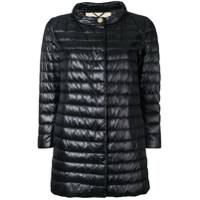 Herno Padded Jacket - Preto