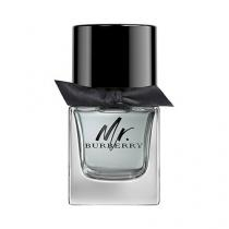 Mr Burberry Masculino Eau De Toilette