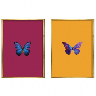 Set De Quadros Swallowtail