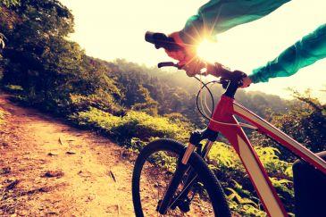 dor lombar em ciclistas