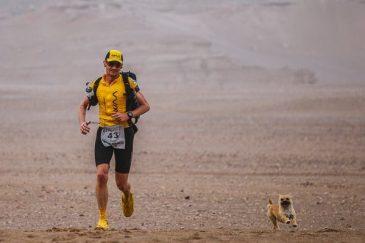 Corredor adota cachorrinha durante ultra no deserto