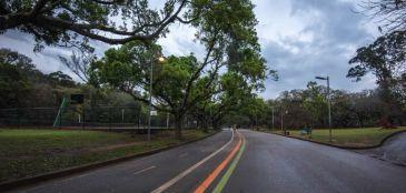 Revitalização do Parque Ibirapuera