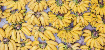 Veja 5 receitas com banana para quem pratica esportes