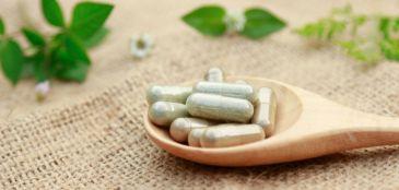 Veja os benefícios da teacrina, alternativa para a cafeína