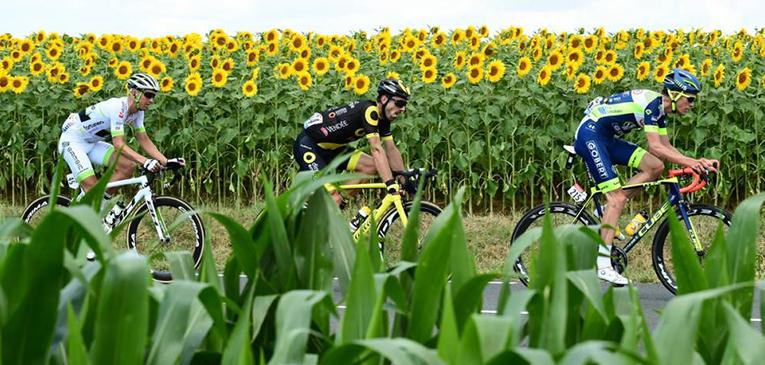 Tour de France 2018 - fotos das primeiras semanas