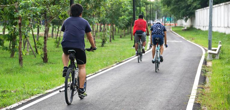 Programa Bicicleta Brasil passa em comissão
