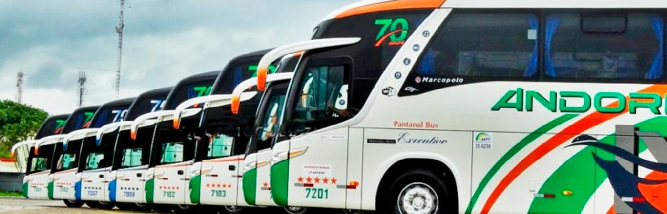 Frota Ônibus Andorinha