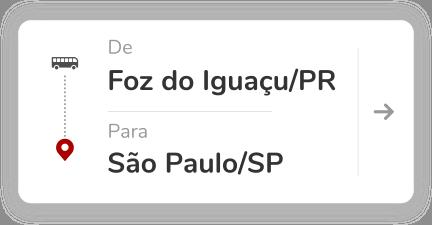 Foz do Iguaçu PR - São Paulo Barra Funda SP